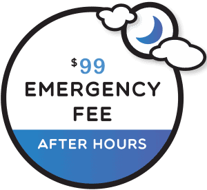 $99 emergency fee for emergency dental care