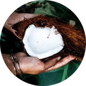 holding healthy coconut for oil pulling in lincoln ne