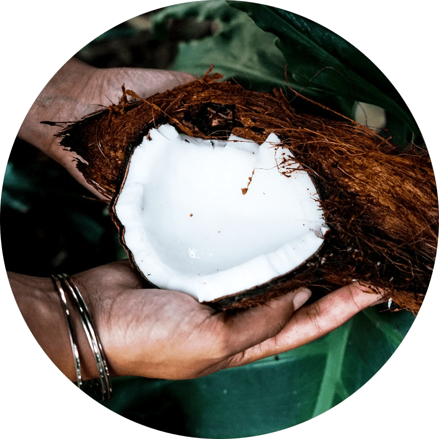 holding healthy coconut